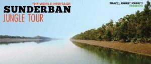 sunderban jungle tour