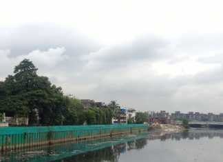 Mumbaikars Choose Mangroves Over Sewage Treatment Plant