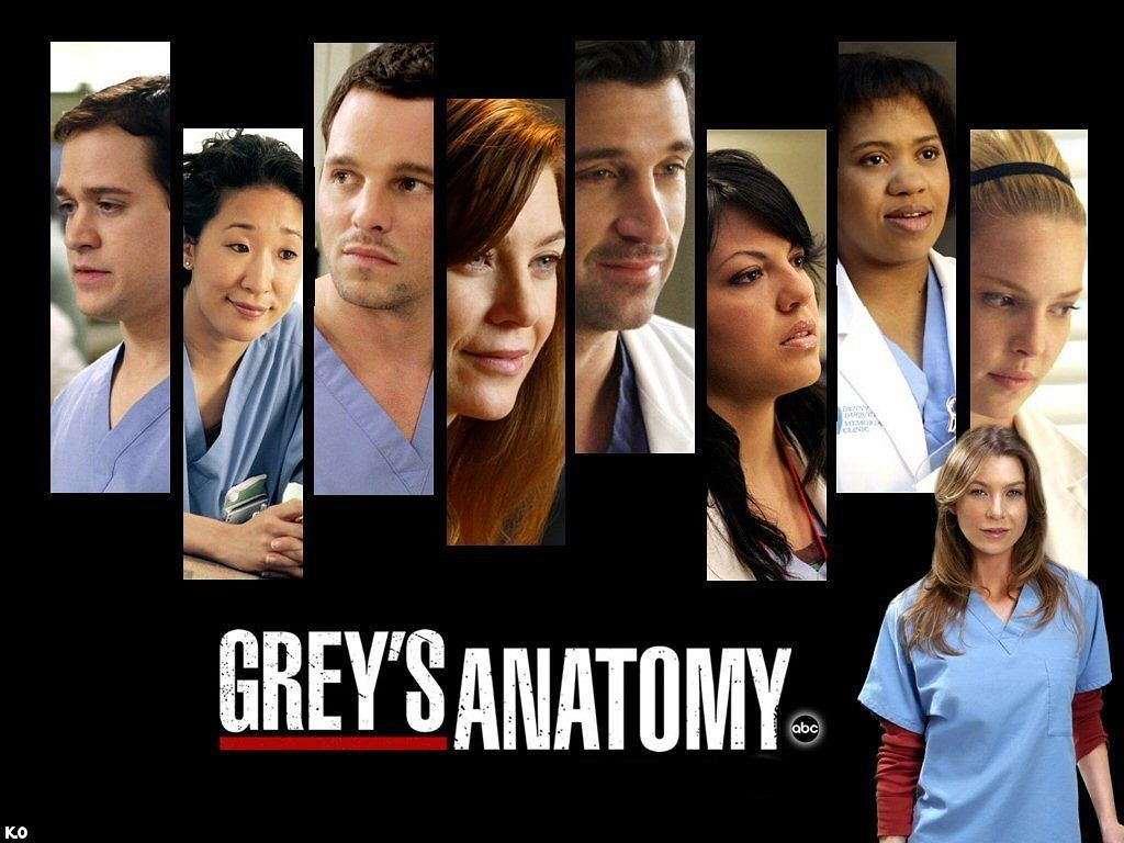 grey-s-anatomy-greys-anatomy-1663492-1024-768-grey-s-anatomy-sons-of-anarchy-doctor-who-fringe-weeds-5-tv-shows-to-binge-watch-jpeg-50422