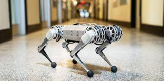 Mini Cheetah Robot