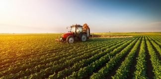 jobs in agriculture