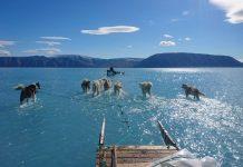 Greenland Ice Melts