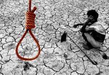 maharashtra farmer crisis
