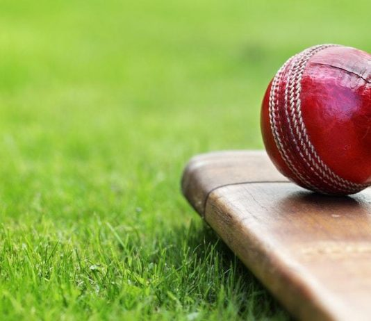 cricket and youth