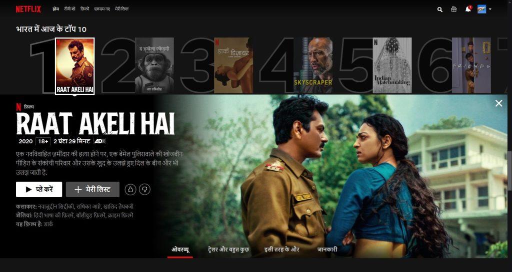 Netflix, hindi interface