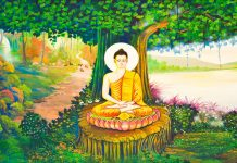 Nature, Banayan Tree, Buddha