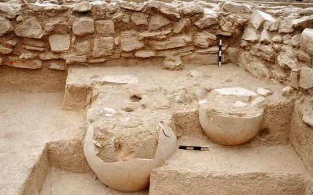 Indus Valley Civilization, Dairy farming