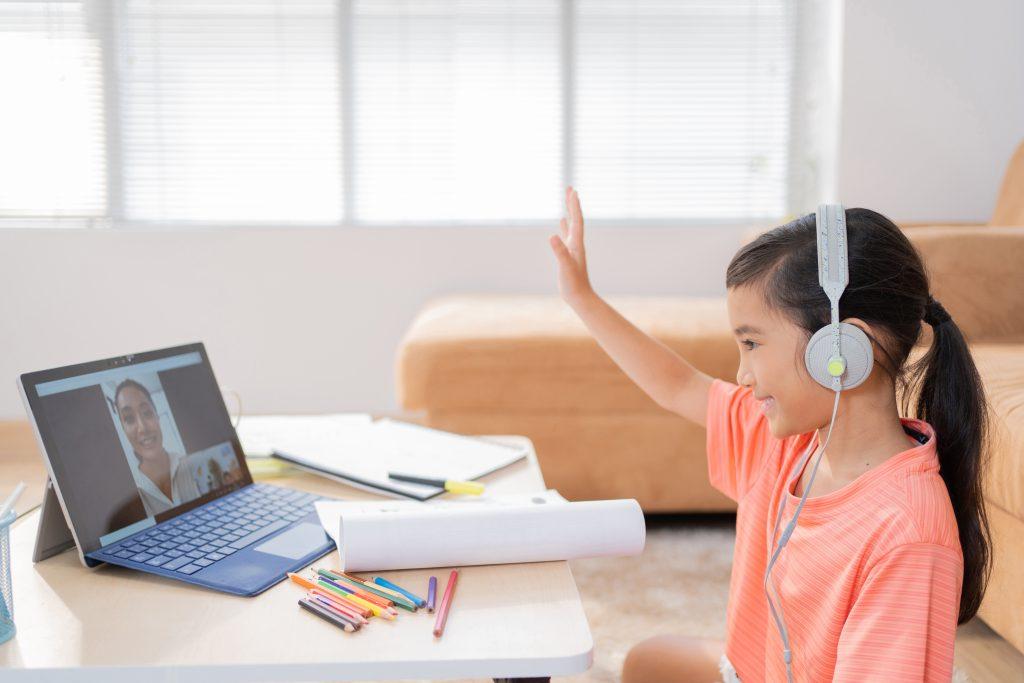 online teaching, career